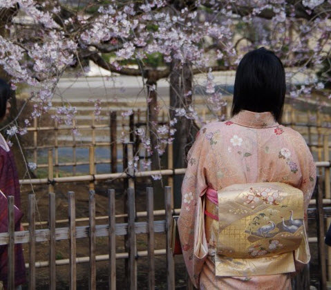 小松姫の逸話
